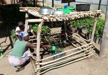 Growing-trees-under-Chitanthali-Malawi